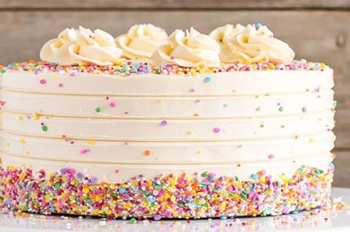 What Makes It The Best Vanilla Cake?