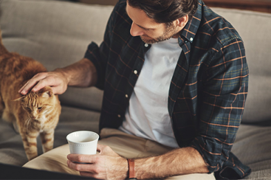 Tips For New Cat Owners