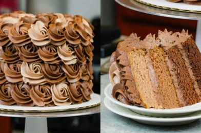 Ombre Chocolate Cake Is Absolutely Delicious